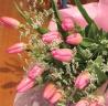 ☆ピンクのチューリップの花束