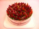 ★ お花のケーキでありがとう ★