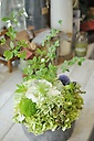 white&green arrangement⑤