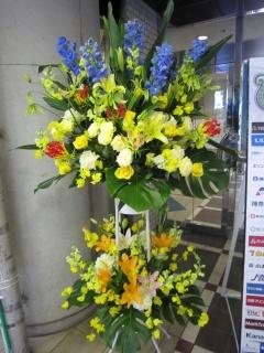御祝スタンド花 2段 黄色×ブルー系