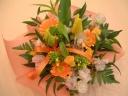 ☆イエロー・オレンジ(春の人気商品)