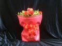 赤いカーネーション鉢