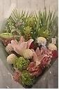 季節のお花のお色味が入ったお供え花束