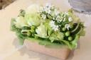 【生花】フレッシュグリーン