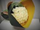 スー・ル・ヴァンのホワイトローズ花束