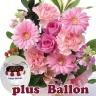 旬のアレンジメント ピンク+お誕生日風船