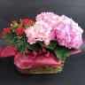 【母の日】 アジサイとカーネーションの花鉢