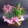 母の日】 カラーとカーネーションの花鉢