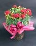 【母の日】 赤いカーネーション鉢