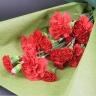 【母の日】赤いスタンダード花束