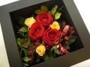 壁掛けフレーム (Red Roses)