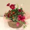 カーネーションと季節の花の寄せ鉢バスケット