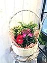 カーネーション鉢とお花の詰め合わせバスケット