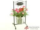 【母の日花鉢】スイングポーチ(P)プロポーズ