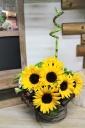 sunflower basket SU-015