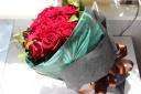 赤バラ 10本 ブーケ風花束