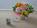 母の日に九谷焼の素敵な模様の招き猫はいかがですか?