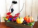 【ハロウィン】かぼちゃとおばけとコウモリと