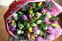 【感激♪抱える位にチューリップの花束を贈ろう♪】