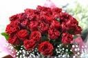 花束【バラとカスミ草の花束】