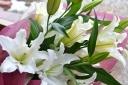 花束【白ユリの花束】