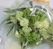 【グリーン&グリーン】カーネーションの花束