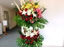 開店・発表会など華やかなお祝いを飾るスタンド花