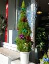 12月のシンボルツリー~クリスマスデコレーション