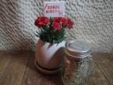 卵型陶器鉢のカーネーション&スプラウト栽培セット