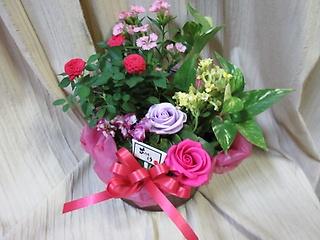 季節の花鉢の寄せかご&バラのソープフラワー