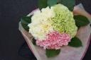 母の日花束 『カーネーション ブーケ』