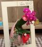 マイクロ胡蝶蘭ローズ2本立壁掛陶器ウッドフレーム付