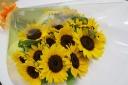 ヒマワリの花束15本