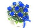 【オリジナル染色】青いバラとかすみ草のアレンジ