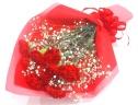 【母の日】赤いカーネーション10本とかすみ草の花束