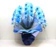 【母の日】青い胡蝶蘭《ブルーエレガンス/3本立ち》