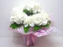 【母の日】アジサイ鉢(白)《花言葉・寛容な愛》