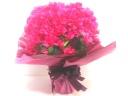 【母の日花鉢人気NO.1】ブーゲンビリアの花鉢