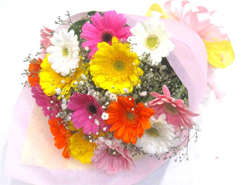 ガーベラ 花束 花言葉