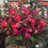 華やかスタンド花