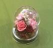 母の日プリザーブド 造花カーネーション入り