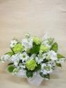 ◆◇御供用 ホワイトグリーン3000◇◆