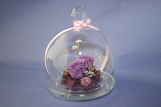 バイオレットガラスドーム
