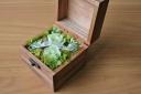 ウッドBOX-S-グリーン