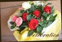 母の日の贈り物に バラの寄せ鉢 3鉢セット