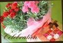 カーネーションの花鉢とバラのシャボンフラワーセット