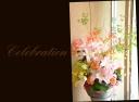 お祝いの花 華やかに 季節のアレンジメント 313