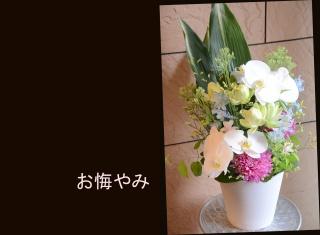 お悔やみの花に 胡蝶蘭のアレンジメント 368