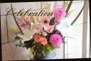 お祝いアレンジメント 百合と季節の花で 508