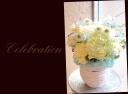 淡い色目 季節の花でアレンジメント 558